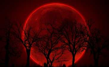Лунное затмение в апреле поможет избавиться от мешающего прошлого