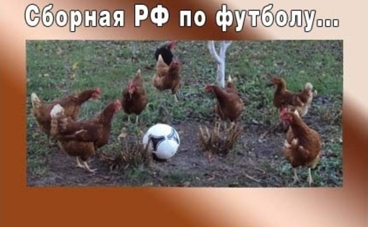 Анекдот дня: ежедневная подборка анекдотов от Tv.ua