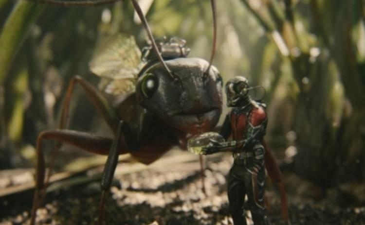 Человек-муравей получил одобрение отца Игры престолов