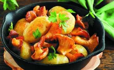 Летние рецепты: блюда из лесных грибов (ФОТО)
