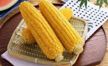 Все буде смачно: Игорь Мисевич учит готовить кукурузу (ВИДЕО)