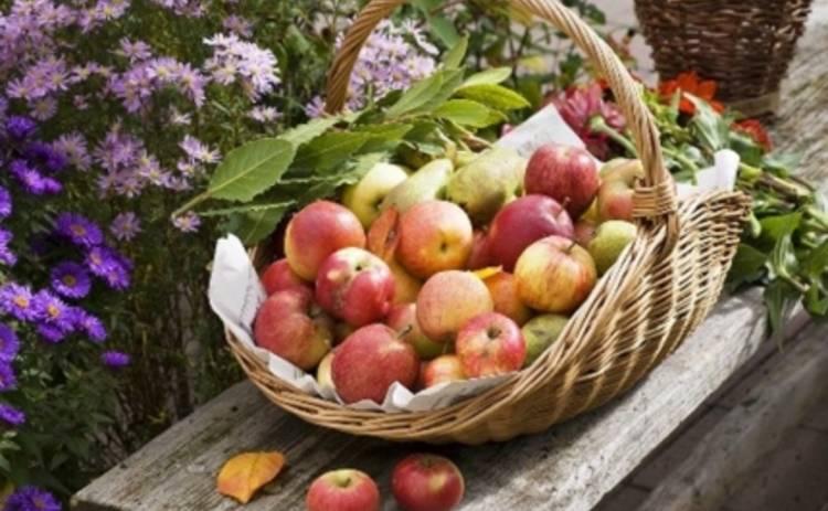 Яблочный Спас 2015: приметы праздника