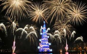Новый год 2016: самые необычные елки (ФОТО)
