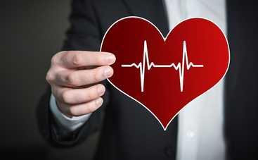 Не камень. 10 фактов о сердце человека