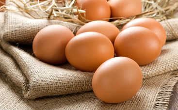 Пасха 2016: как выбирать домашние яйца