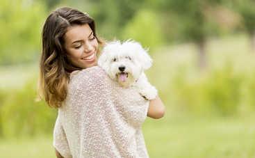 Ученые доказали, что собаки не любят обниматься