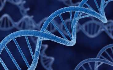 В США могут появиться люди с ГМО
