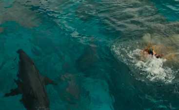 Фильм, после которого плавание станет кошмаром (видео)