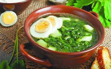 ТОП-3 рецепта летних супов с зеленью (фото)