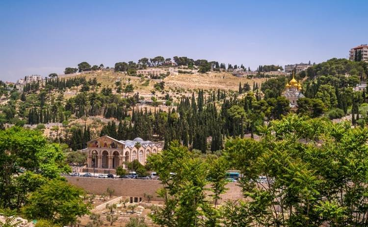 Путешествие по Иерусалиму: увидеть – и вернуться (фото)