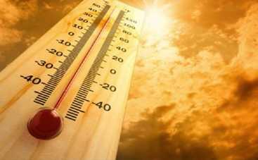 ТОП-5 продуктов, которые опасны в летнюю жару