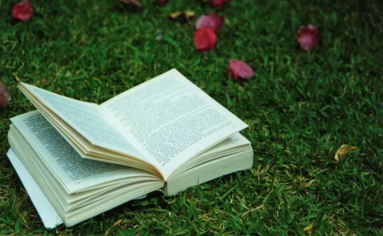 ТОП-5 книжных новинок с летней «альтернативой»
