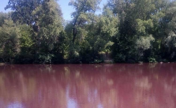 Вода в столичной реке стала ярко-красной (фото)