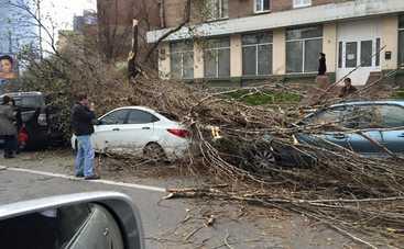 Сильный ветер в Киеве уже натворил дел (фото)