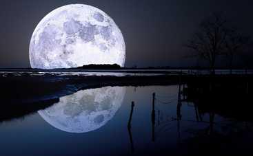 Со следующего года людей будут хоронить на Луне