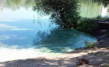 В Киеве озеро окрасилось в зелено-голубой цвет (фото)