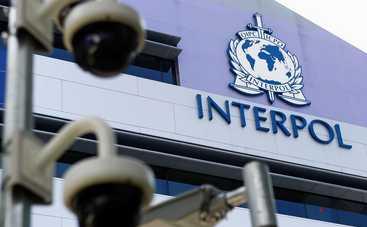Интерпол отказался искать главарей боевиков
