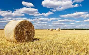 Лето не спешит покидать Украину