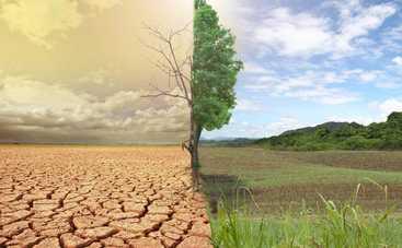 Украину ждут необратимые изменения климата