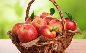 Все буде смачно: 10 лучших блюд из яблок - часть 1 (эфир от 08.10.2016)