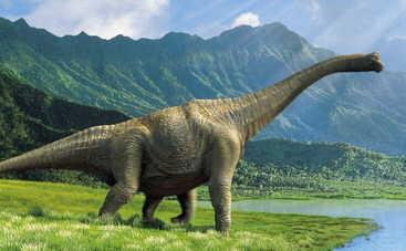 Ученые нашли новых динозавров