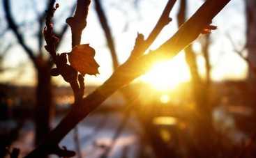 Совсем скоро в Украине ожидается потепление