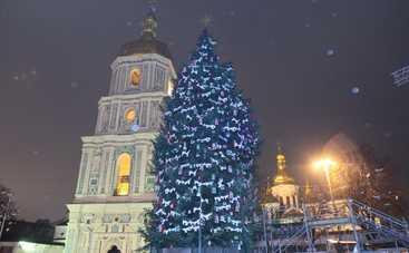 В Киеве установят елку-рекордсменку