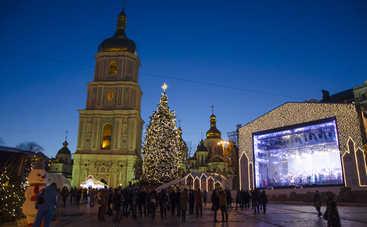 В Киеве установили главную елку страны (фото)