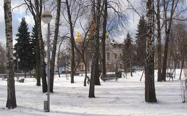 Природа решила побаловать украинцев приятными выходными