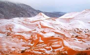 На севере Сахары впервые за 37 лет выпал снег