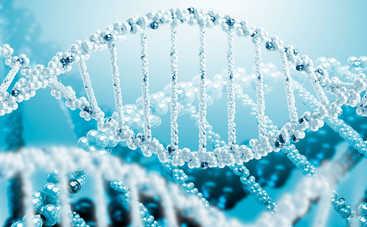 Ученые создадут генетически модифицированных людей