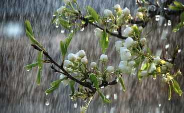 Сегодня в Украине местами будет мокро