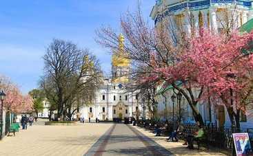Куда пойти в Киеве на выходных 11-12 марта (афиша)