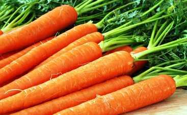Все буде смачно: 10 лучших блюд из моркови - часть 1 (эфир от 25.03.2017)