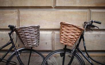 Крути педали: чем полезны велопрогулки?