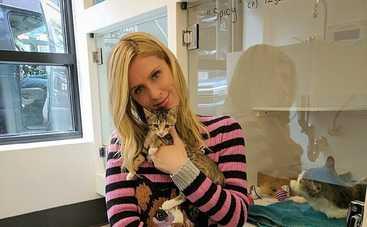 Ники Хилтон скрывает вторую беременность (фото)