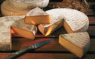 В Швейцарии нашли съедобный сыр со 142-летней выдержкой