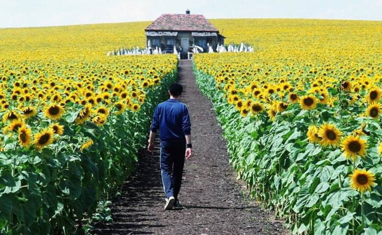 Украина глазами голливудских режиссеров: топ-5 фильмов