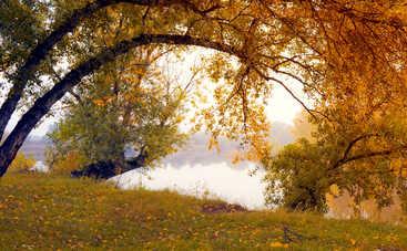 Во вторник в Украине ожидается небольшое потепление