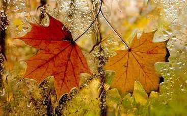 В пятницу в Украине будет жарко, местами дожди с грозами