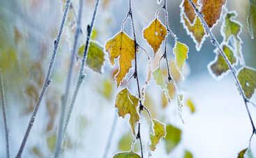 Погода порадует украинцев осенней прохладой и новыми заморозками