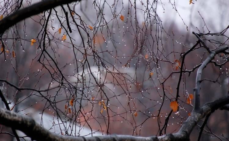 Сегодня в Украине будет холодно, местами дожди