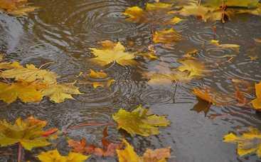 В пятницу Украину накроют дожди