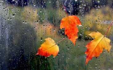 В пятницу по всей Украине пройдут дожди