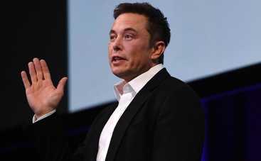 Илон Маск запал на звезду «50 оттенков серого»