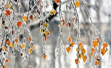 Сегодня ночью в Украине температура опустится до -10