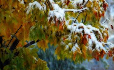 Во вторник в Украине будет мокро и снежно