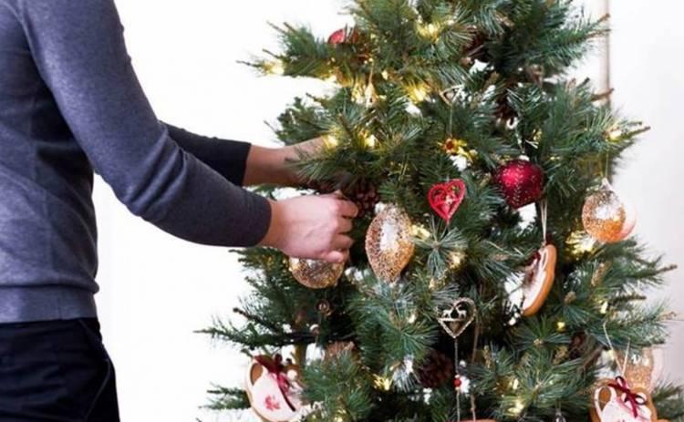 Как правильно украсить елку в год Собаки: 10 секретов