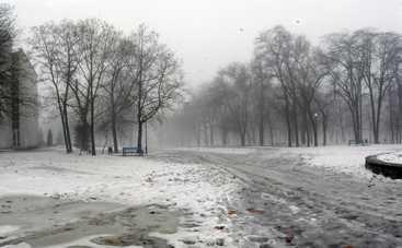 В понедельник в Украине будет тепло, но мокро