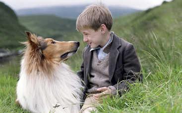 Угадайте известных собак из фильмов (тест)